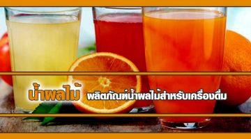 น้ำผลไม้ ผลิตภัณฑ์น้ำผลไม้สำหรับเครื่องดื่ม